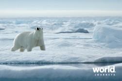 world-journeys-epic-high-arctic-0-5304-large