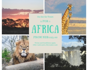 Africa On teh Go Tours
